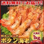 (ぼたん海老 ぼたん)本ボタンエビ 1kg/約14〜16尾入り 送料無料(海鮮丼 ボタン海老)