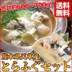 国産 熊本県天草産 とらふぐ1匹セット 約600〜700g 2〜3人前 【送料無料】 ギフト お歳暮