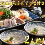 国産 熊本県天草産 てっさ付きとらふぐ鍋セット 2〜3人前 【送料無料】 ギフト てっちり