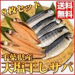さば サバ 鯖 千葉県産 天塩干しサバ 8枚セット ♪晩ご飯のおかずに是非 同梱 干物 魚 お試し 送料無料 国産