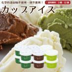 アイスクリーム 詰め合わせ 12個 ギフト お菓子 スイーツ 卵不使用 無添加 送料無料 [冷凍便] gift