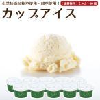 アイスクリーム 詰め合わせ ミルク 10個 ギフト お菓子 スイーツ 卵不使用 無添加 送料無料 [冷凍便] gift