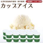 プレゼント アイスクリーム 詰め合わせ ミルク 20個 ギフト お菓子 スイーツ 卵不使用 無添加 送料無料 [冷凍便] gift
