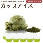 プレゼント アイスクリーム 詰め合わせ 抹茶 10個 ギフト お菓子 スイーツ 卵不使用 無添加 送料無料 [冷凍便] gift