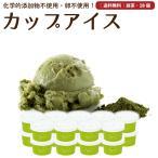 プレゼント アイスクリーム 詰め合わせ 抹茶 18個 ギフト お菓子 スイーツ 卵不使用 無添加 送料無料 [冷凍便] gift