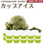 プレゼント アイスクリーム 詰め合わせ 抹茶 20個 ギフト お菓子 スイーツ 卵不使用 無添加 送料無料 [冷凍便] gift
