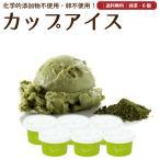 プレゼント アイスクリーム 詰め合わせ 抹茶 6個 ギフト お菓子 スイーツ 卵不使用 無添加 送料無料 [冷凍便] gift