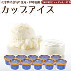 アイスクリーム 詰め合わせ ヨーグルト 10個 ギフト お菓子 スイーツ 卵不使用 無添加 送料無料 [冷凍便] gift june