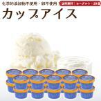 アイスクリーム 詰め合わせ ヨーグルト 20個 ギフト お菓子 スイーツ 卵不使用 無添加 送料無料 [冷凍便] gift june