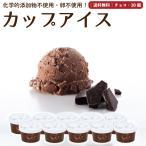 プレゼント アイスクリーム 詰め合わせ チョコレート 10個 ギフト お菓子 スイーツ 卵不使用 無添加 送料無料 [冷凍便] gift