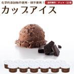 プレゼント アイスクリーム 詰め合わせ チョコレート 12個 ギフト お菓子 スイーツ 卵不使用 無添加 送料無料 [冷凍便] gift