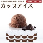 プレゼント アイスクリーム 詰め合わせ チョコレート 18個 ギフト お菓子 スイーツ 卵不使用 無添加 送料無料 [冷凍便] gift