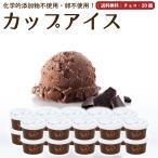 プレゼント アイスクリーム 詰め合わせ チョコレート 20個 ギフト お菓子 スイーツ 卵不使用 無添加 送料無料 [冷凍便] gift