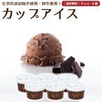 プレゼント アイスクリーム 詰め合わせ チョコレート 6個 ギフト お菓子 スイーツ 卵不使用 無添加 送料無料 [冷凍便] gift