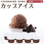 プレゼント アイスクリーム 詰め合わせ チョコレート 8個 ギフト お菓子 スイーツ 卵不使用 無添加 送料無料 [冷凍便] gift