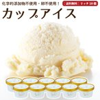 プレゼント アイスクリーム 詰め合わせ クリームリッチ 10個 ギフト お菓子 スイーツ 卵不使用 無添加 送料無料 [冷凍便] gift
