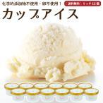 プレゼント アイスクリーム 詰め合わせ クリームリッチ 12個 ギフト お菓子 スイーツ 卵不使用 無添加 送料無料 [冷凍便] gift