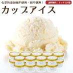 母の日 アイスクリーム 詰め合わせ クリームリッチ 18個 ギフト お菓子 スイーツ 卵不使用 無添加 送料無料 [冷凍便] nov