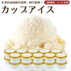プレゼント アイスクリーム 詰め合わせ クリームリッチ 20個 ギフト お菓子 スイーツ 卵不使用 無添加 送料無料 [冷凍便] gift