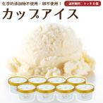 プレゼント アイスクリーム 詰め合わせ クリームリッチ 8個 ギフト お菓子 スイーツ 卵不使用 無添加 送料無料 [冷凍便] gift