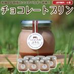 ギフト プリン6個 チョコレート お菓子 スイーツ 詰め合わせ 無添加  お取り寄せ 瓶入り 高級 送料無料[冷蔵便]nov