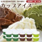 アイスクリーム 詰め合わせ 20個セット ギフト 無添加 卵不使用 お取り寄せ 送料無料 [冷凍便] gift