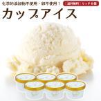 アイスクリーム 詰め合わせ クリームリッチ 6個 ギフト お菓子 スイーツ 卵不使用 無添加 送料無料 [冷凍便] gift