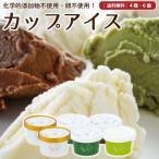 ギフト アイスクリーム 詰め合わせ 6個 抹茶 チョコ お菓子 スイーツ 卵不使用 無添加 送料無料 [冷凍便] gift
