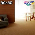 ショッピングカーペット カーペット 長四畳半 長4畳半 東リ カーペット ラグ 江戸間 長4.5帖(200×352) 絨毯 東リ セグエ