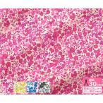リバティプリント Wiltshire ウィルトシャー 3339009 J19B J19C J19D J19E LIBERTY 2019SS One tone Gradation タナローン 生地 布