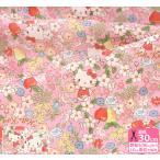 ハローキティ KTフラワーガーゼ ダブルガーゼ キティちゃんとお花とフルーツの柄 キャラクター生地 布 774844 774851 数量3(30cm)から10cm単位