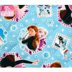 キルト アナと雪の女王 アナとエルサとオラフのフレーム GRQ-1098 キルティング 中綿入り 半針タイプ ディズニー キャラクターファブリック KOKKA