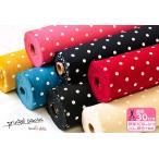 11号帆布(ハンプ) パレットカラーハンプ ドット Sサイズ kokochi fabric