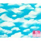 雲たっぷりの青空オックス 大空柄 生地 布 ST5600
