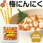 梅肉 梅にんにく 330g 中田食品 梅 にんにく お酒にあう おつまみ