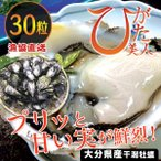 生牡蠣(カキ/かき)ブランド牡蠣(ひがた美人)30粒「漁協直送」