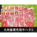 雅虎商城 - 黒毛和牛ハラミ 横隔膜(100g)