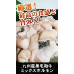 雅虎商城 - 九州産黒毛和牛ミックスホルモン(特上)500g