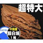 うなぎ白焼き 中国産 超特大 業務用 260g1尾