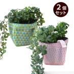 ガーデニング用プランターカバー  園芸グッズ uchi-green  2個セット 鱗 ピンク&グリーン