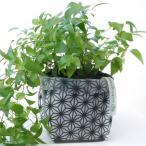 おしゃれな鉢カバー【uchi-green】麻の葉