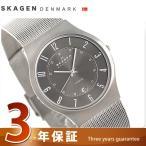 18日までエントリーで最大17倍 スカーゲン 腕時計 メンズ チタニウム 233XLTTM