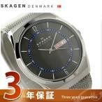 19日からエントリーで全品+5倍 スカーゲン メルビ デイデイト メンズ 腕時計 SKW6078