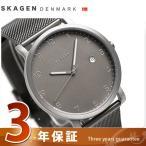 スカーゲン ハーゲン 40mm クオーツ メンズ 腕時計 SKW6307 SKAGEN