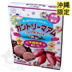 沖縄限定 カントリーマアム 沖縄県産紅いも 16枚 (不二家チョコチップクッキー)