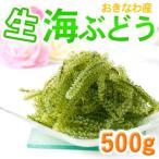 生 海ぶどう 500g(沖縄産) (4個以上お買い上げで送料無料)
