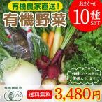 旬のこだわり有機野菜おまかせ10種セット!送料無料!