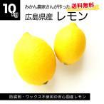 しょうちゃんのレモン 10kg 広島県産 瀬戸内産 国産レモン 防腐剤不使用 ワックス不使用 送料無料 サイズミックス
