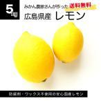 しょうちゃんのレモン 5kg 広島県産 瀬戸内産 国産レモン 防腐剤不使用 ワックス不使用 送料無料 サイズミックス