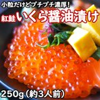 250g 紅鮭 いくら醤油漬け 小粒 特製醤油たれで漬け込んだ ぷちぷち弾ける濃厚食感 家庭用 小粒だけどぷちぷち濃厚な紅鮭いくら